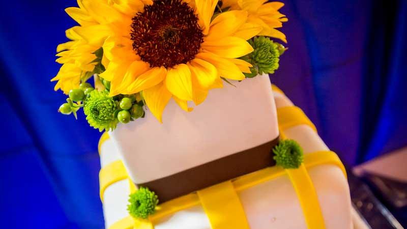 Breckenridge Weddings